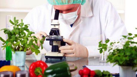 Vitaminfood: voorop in de voedselrevolutie